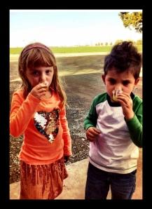 Giada Coldani and Dylan Kerns tasting some fresh milled EVOO